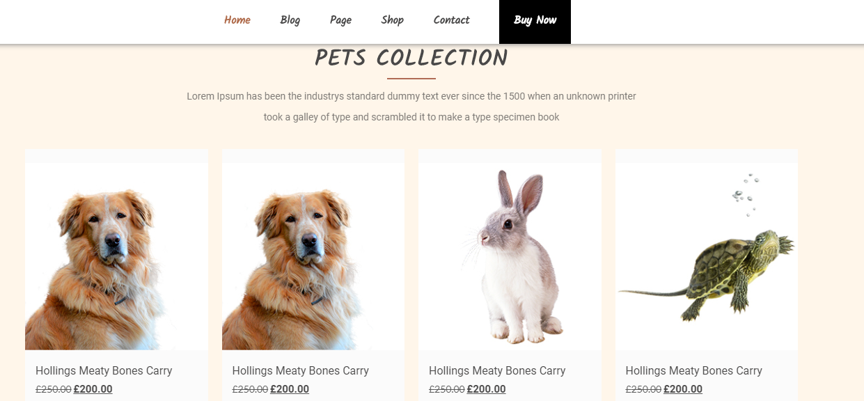 Veterinary Pet Care Template for WordPress - 2