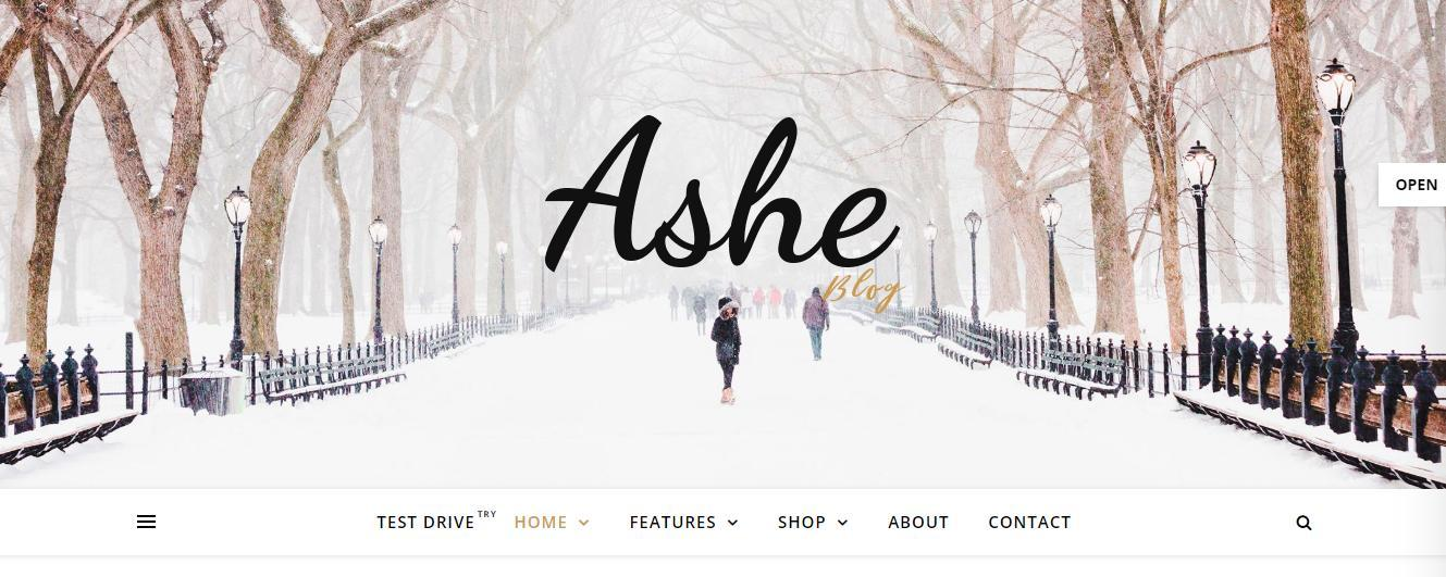 Free Ashe Women's Blog Template for WordPress - 1