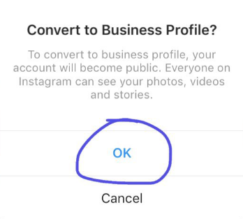 Convert to business profile Instagram