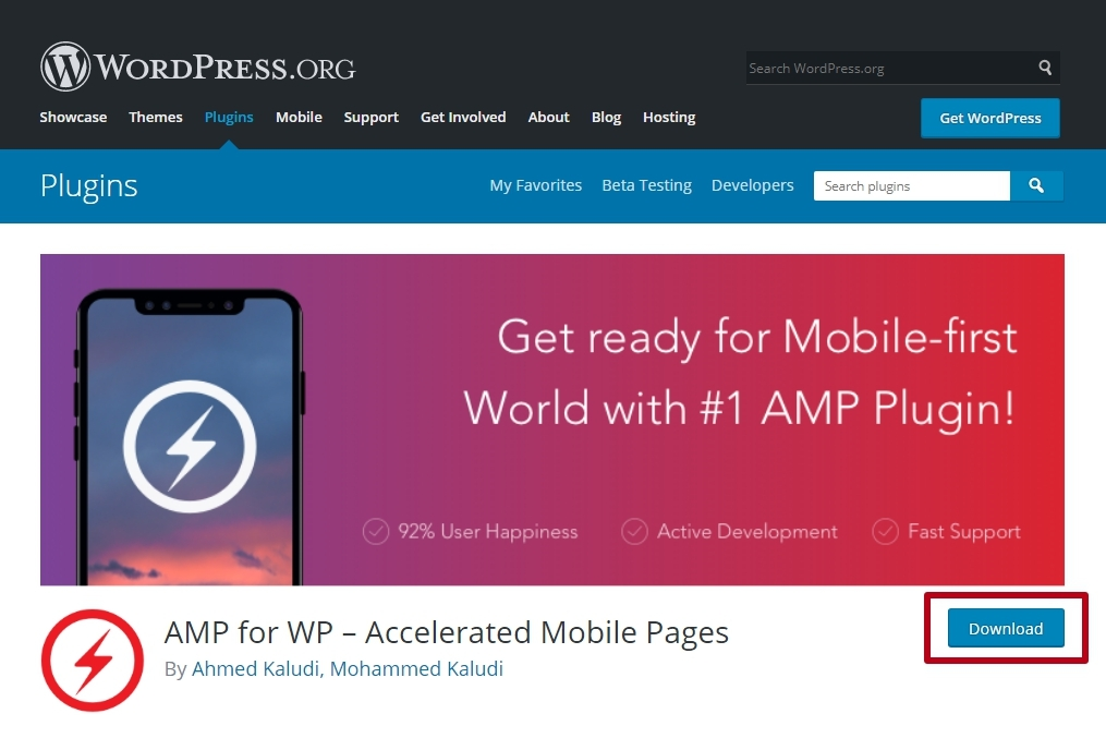 AMP Plugin for WP - Accelerated Mobile Pages