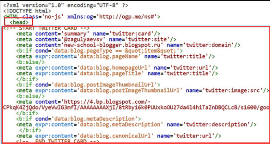 Twitter Card markup in the page code