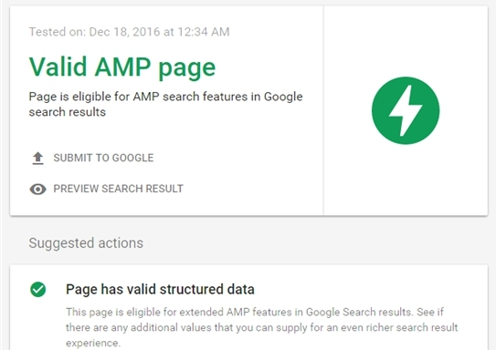 Successful check of AMP pages in the Google Search Console